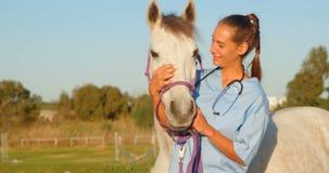 Doctor veterinario que se coloca con el caballo 4k metrajes