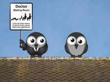 Doctor Waiting Room. Comical doctor waiting room sign with doctor and patient birds perched on a rooftop against a clear blue sky Royalty Free Stock Photography