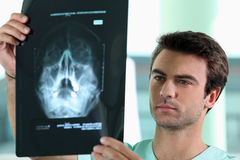 Doctor watching X-ray stock photo