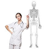 Doctor woman pointing on drawing human skeleton. Stock Photography