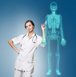 Doctor woman pointing on drawing human skeleton. Stock Images