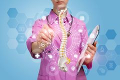 A doctor working with an artificial spine model royalty free stock photos