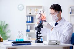 The doctor working with blood samples in hospital clinic lab Royalty Free Stock Photography