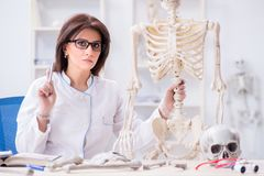 The doctor working in the lab on skeleton. Doctor working in the lab on skeleton Stock Photos