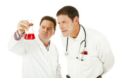 Doctor Working With Scientist royalty free stock photo