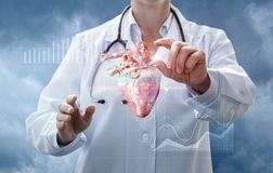 Doctor works with the donor heart . stock photos