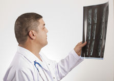 Doctor and x ray Stock Image