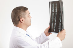 Doctor and x ray Royalty Free Stock Photos