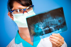 Doctor with xray Stock Photography