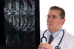 Doctor and xray royalty free stock photography