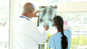 Doctors analyzing together xray. In medical office stock video footage