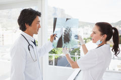 Doctors both looking over an x ray Royalty Free Stock Photography