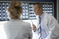 Doctors Discussing Brain Scans Stock Photo