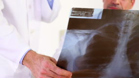 Doctors discussing xray stock video