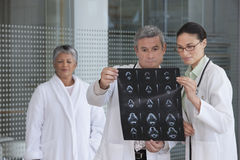 Doctors discussing xray results Royalty Free Stock Photography