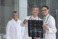Doctors discussing xray results Stock Photography