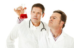 Doctors Examine Blood Sample Royalty Free Stock Images
