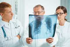 Doctors examine x-ray image Royalty Free Stock Image