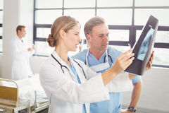Doctors examining an x-ray report. In hospital Royalty Free Stock Photos