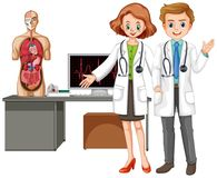 Doctors with Human Anatomy on White Background. Illustration stock illustration