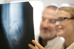 Doctors making a diagnosis using x-ray images Stock Photos
