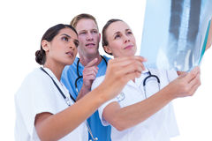 Doctors and nurses looking at x-ray Stock Images