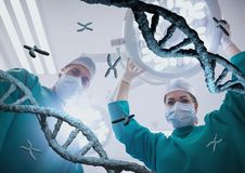 Doctors standing with 3D DNA strands. Digital composite of Doctors standing with 3D DNA strands Stock Photography
