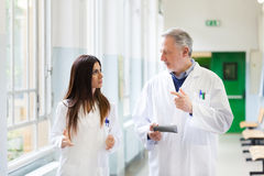 Doctors talking in an hospital hallway Stock Image