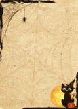 Document achtergrond voor Halloween wordt gestileerd dat Kader met netto en kat royalty-vrije illustratie