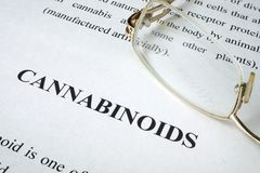 Document about Cannabinoids. Document about Cannabinoids on a desk stock images