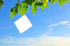 Document dat in de wind fladdert Stock Foto