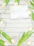 Document kaart met tulpen Eps 10 Royalty-vrije Stock Afbeeldingen