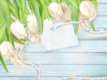 Document kaart met tulpen Eps 10 Stock Afbeeldingen