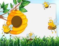 Document ontwerp met bijen en bijenkorf Stock Foto's