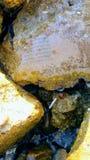Document op zeedijk wordt gecementeerd die Royalty-vrije Stock Foto