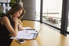 Document travaillant de lecture de femme d'affaires dans le bureau, vue de côté images stock