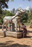 Documentair beeld redactie Tempelfestival India Stock Foto