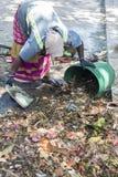 Documentair hoofdartikel PUDUCHERY, PONDICHERY, TAMIL NADU, circa van INDIA - Maart-, 2018 De Indische vrouwen sorteren afval in  stock afbeeldingen