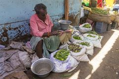 Documentary editorial image. An unidentified Indian at his fruit and vegetable shop in a small rural village market in Tamil Nadu. Royalty Free Stock Images