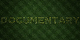 DOCUMENTARY - fresh Grass letters with flowers and dandelions - 3D rendered royalty free stock image Royalty Free Stock Images