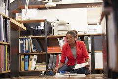 Documenti della lettura del pavimento di Sitting On Office della donna di affari Immagini Stock Libere da Diritti