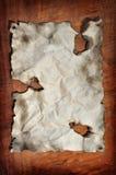 Documento bruciato immagine stock
