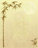 Documento de información chino del dragón y del bambú ilustración del vector