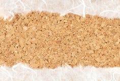Documento de la mora sobre textura del corcho Fotos de archivo