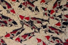 Documento del gelso con i pesci della carpa Fotografia Stock Libera da Diritti