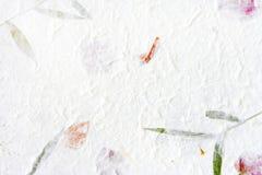 Documento del gelso con il fiore rosso Fotografia Stock