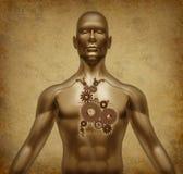 Documento del grunge del cuerpo humano viejo con las válvulas de corazón m Foto de archivo libre de regalías