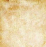 Documento dell'annata illustrazione vettoriale