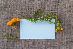 Documento en blanco y flor sobre lona Imagen de archivo libre de regalías