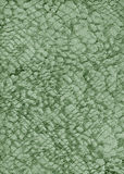 Documento metallico verde, naturale, struttura, estratto, Immagini Stock Libere da Diritti